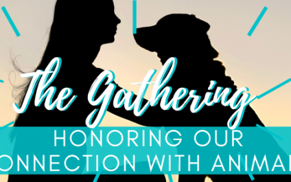 The Gathering – July 2