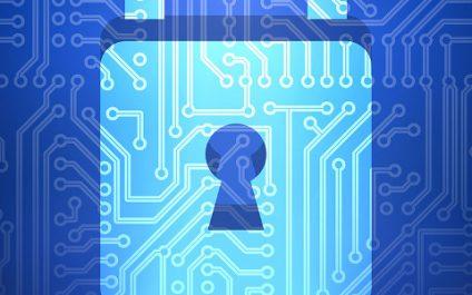 业务数据的浏览器安全
