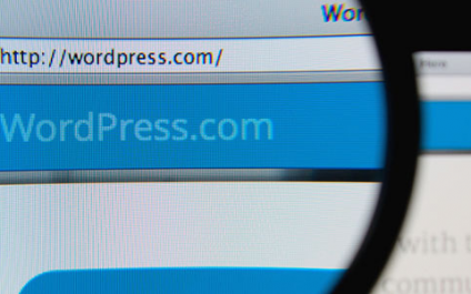 Vulnerabilities on WordPress websites