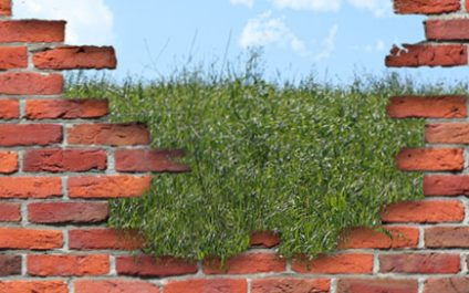 How to Relieve Your Patch Management Burden