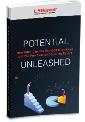 LD-USWired-Potential-How-SMBsCanUse-ManagedITServices-eBook-Cover
