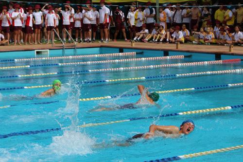 SC 2016 swim carnival 067