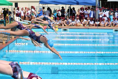SC 2016 swim carnival 216