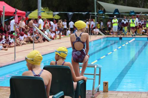 SC 2016 swim carnival 279