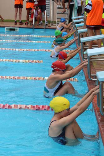 SC 2016 swim carnival 439