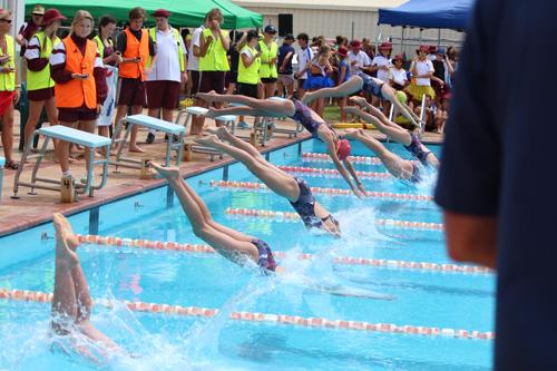 SC 2016 swim carnival 485