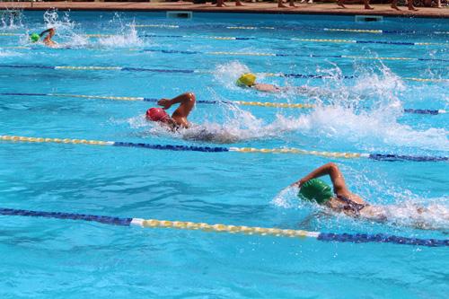 SC 2016 swim carnival 646