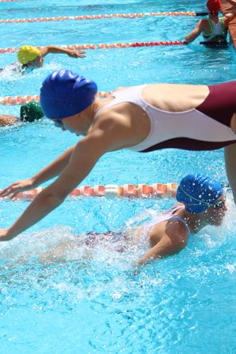 SC 2016 swim carnival 687