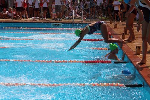 SC 2016 swim carnival 707