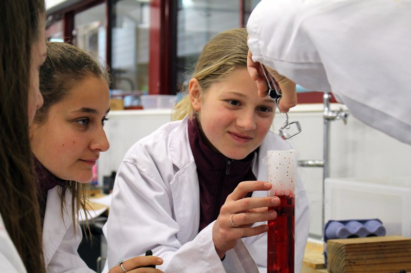 science-activity-0008