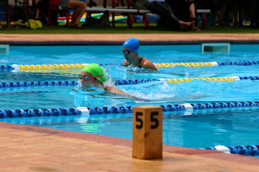 Yr 9-12 Swimming Carnival - 40