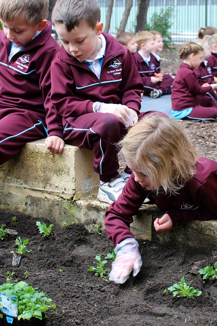 Img-Pre-Primary-Students-Plant-Interactive-Gardens-1
