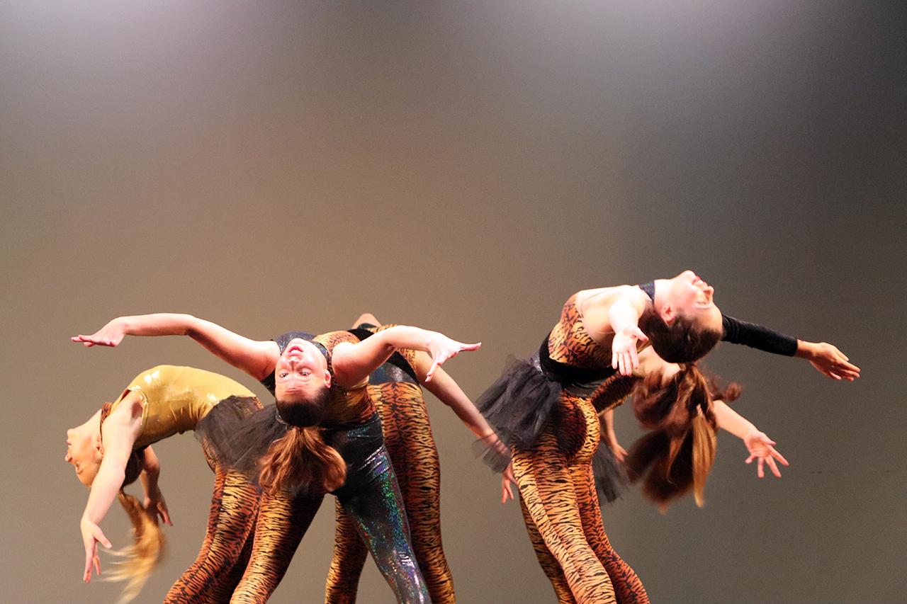 Dance 2 IMG_2025
