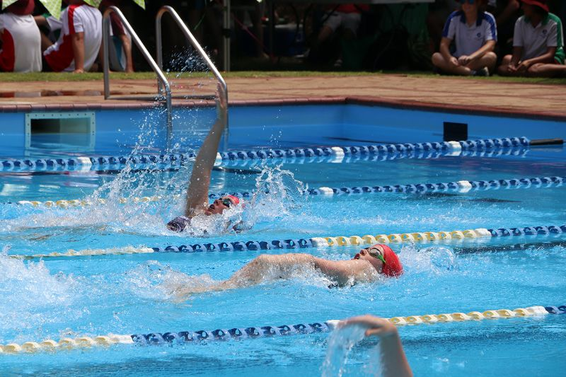 Years 9-12 Inter-House Swimming Carnival (56)