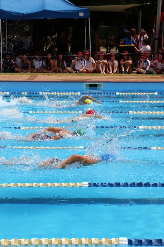 Years 9-12 Inter-House Swimming Carnival (62)