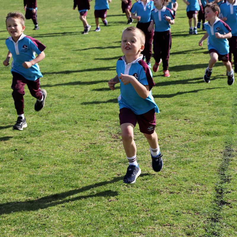 Primary Fun Run and Cross Country (2)