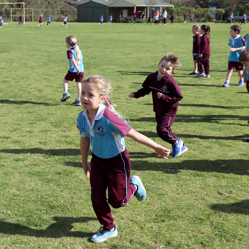 Primary Fun Run and Cross Country (3)