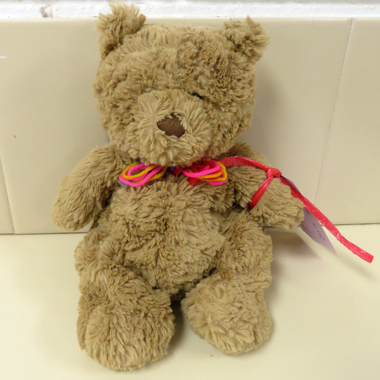 Star Bear - George Byrne-Colclough