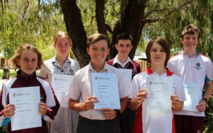 ICAS Maths Distinctions