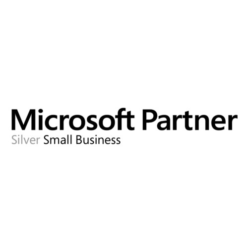 Microsoft Partner - Silver Small Business