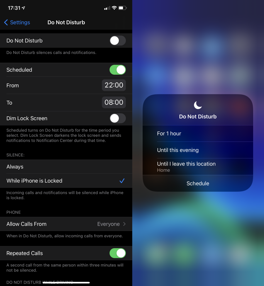 04-iPhone-Do-Not-Disturb-Options