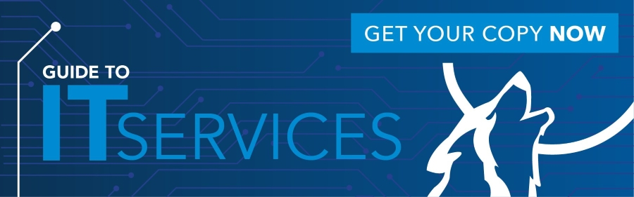 Guide-to-IT-services