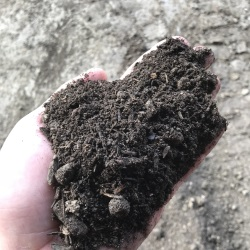 High-quality MD State Approved Topsoil and Organic Soil Conditioners, Baltimore - MD State Approved Topsoil