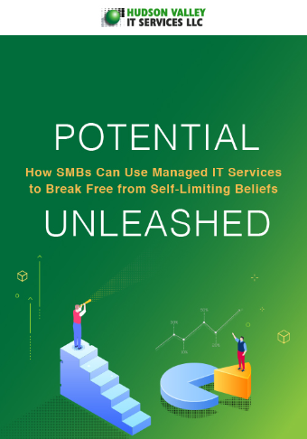 LD-HudsonValley-Potential-How-SMBsCanUse-ManagedITServices-eBook-Cover