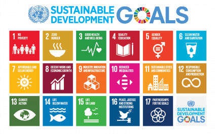 Mapping the Renewable Energy Sector to the Sustainable Development Goals