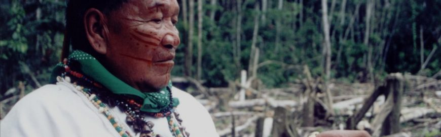 The Right to Health of Indigenous Peoples and Nature