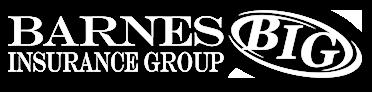 Barnes Insurance Group