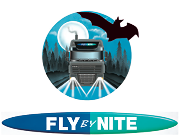 Fly-by-nite-