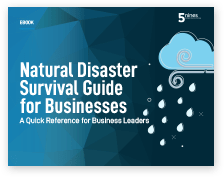 Img-eBook-Resources-5nines-Natural-Disaster-Survival-Guide-for-Businesses