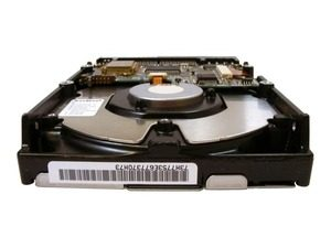 How You Can Prevent Data Loss