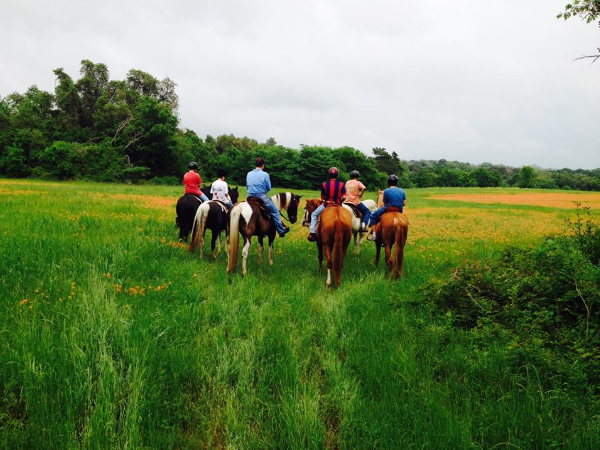 Enjoy a nice leisurely horseback ride through PermaVista Ranch.