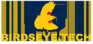 Birdseye Technical Services, Inc.