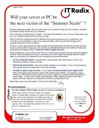 Summer 2008 IT Radix Resource Newsletter