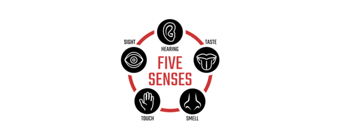 The 5 Senses of Information Technology