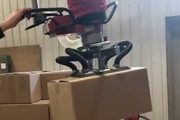Ergonomic Box Lifter