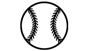 Baseball Netting System
