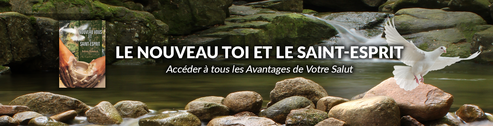 French-ACO_New-You-and-The-Holy-Spirit_Website-Banner_1950x5001