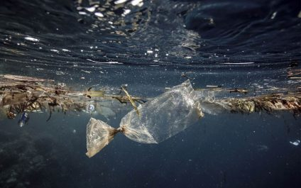 AIT launches Master in Marine Plastic Abatement with US$ 3 Million Japan Grant
