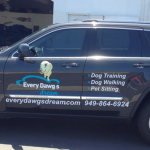 car wrap, vehicle graphics, digital print wrap, vehicle wrap, fleet graphics, car decals