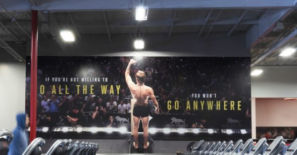 wall wrap, wall graphic, wall mural, wall decal, gym wall graphics, ufc gym, ufc, wall decor, mc greggor, connor mc greggor