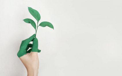 5 écogestes en entreprise