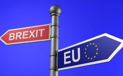 Countdown to Britain's EU Referendum