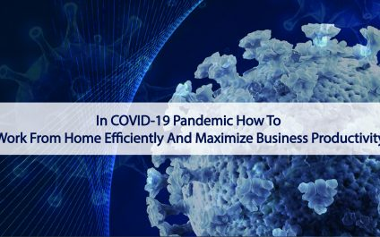 In COVID-19 Pandemic How To Work From Home Efficiently And Maximize Business Productivity