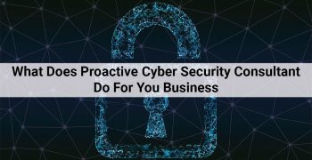What Does Proactive Cyber Security Consultant Do For You Business