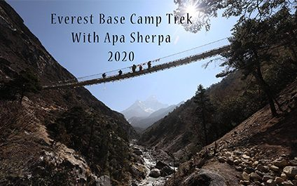 ASF Trek 2020