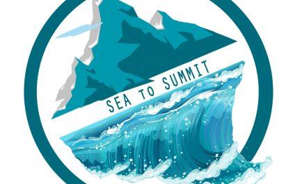 APA Sherpa Foundation fundraiser 2020